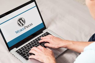 WordPress navodila