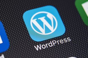 WordPress.com ali WordPress.org
